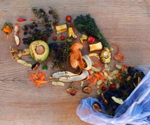 Food Waste 3.jpg