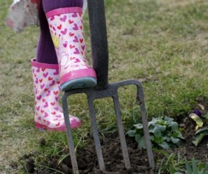 Gardening Education for Children