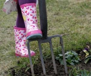 Gardening Education for Children
