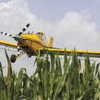 Advancing agronomic expertise