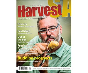 Harvest July2.jpg