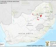 African swine fever map.png