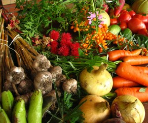 1280px-Ecologically_grown_vegetables.jpg