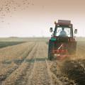 agriculture_88064710.jpg