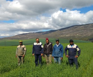 PHOTO_Emerging_farmers_from_Overberg_Boerdery_Trust.jpg
